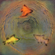 Fishes 2/ Рыбы 2  / 2010  /  Acril on canvas / 100х100см